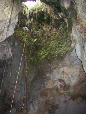 Cueva Gumersindo 016[1]